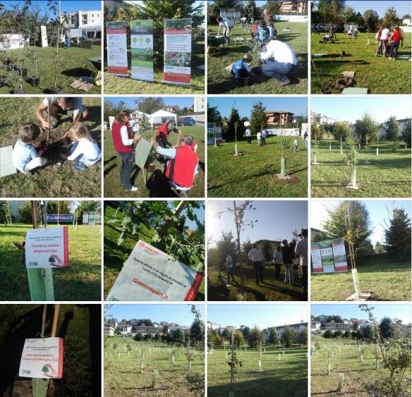 progetto forestazione urbana a Cantù