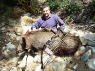 caccia-cinghiale-arco