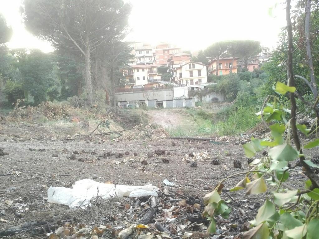 Monte Porzio Catone Cosa Vedere comitato di tutela monte porzio catone | un ambiente da